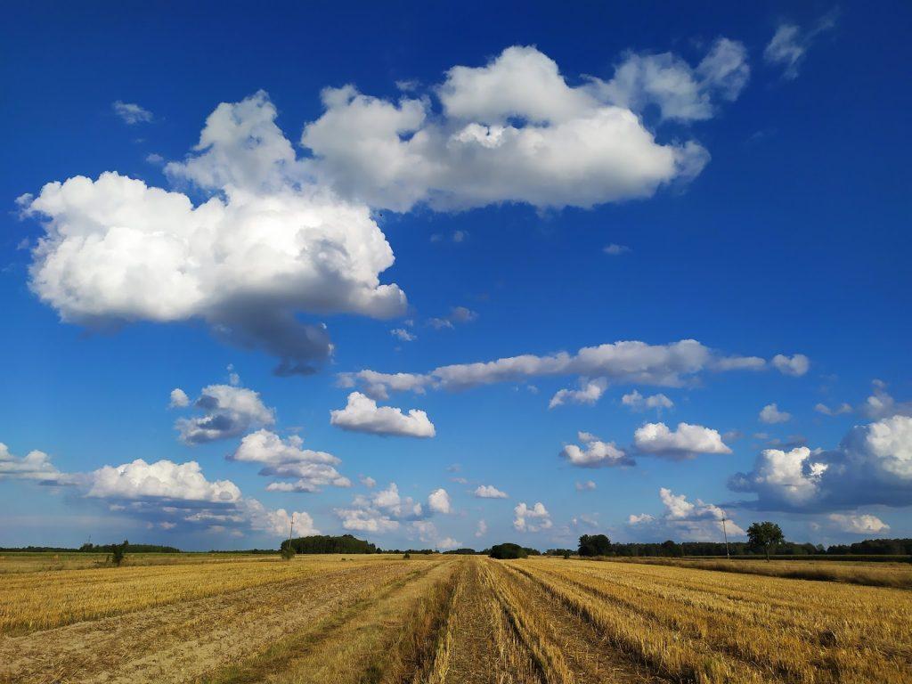 Pole po żniwach, niebieskie niebo z chmurami.